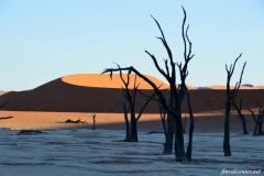 В-пустыне-Намиб